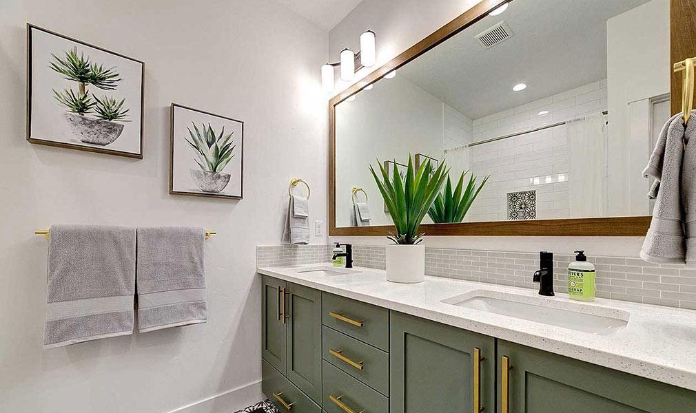 biljke za kupatilo aloe vera