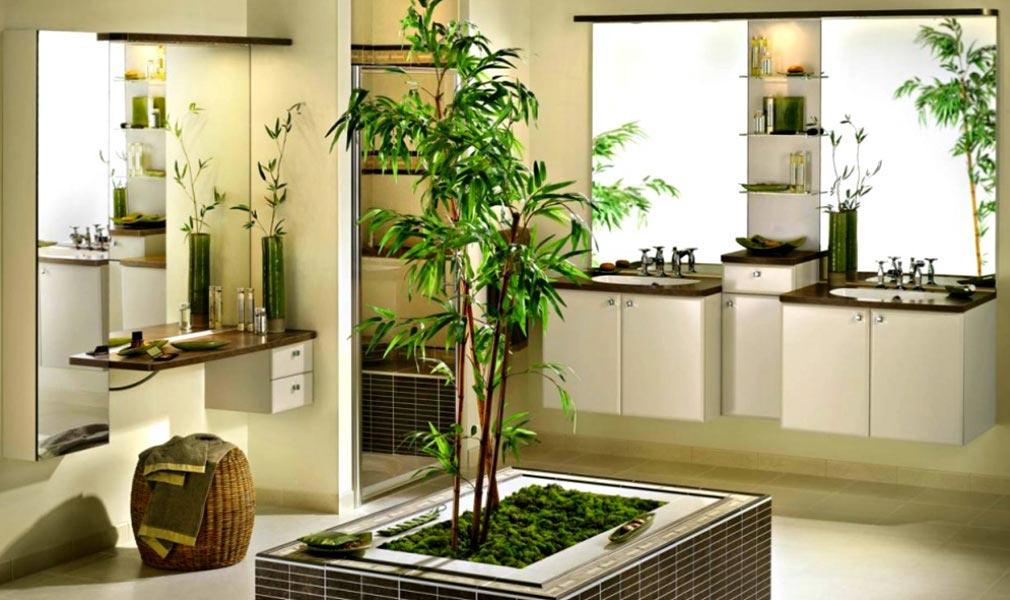 biljke dobre za vase kupatilo