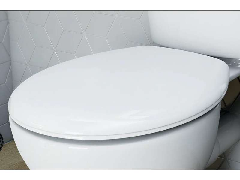 Kako odabrati WC dasku?