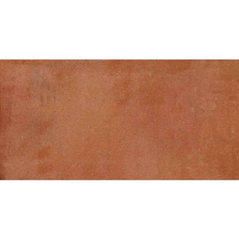 Maiolica Cotto 50x25cm